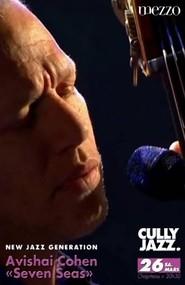 Avishai Cohen - Seven Seas Cully Jazz Festival 2011